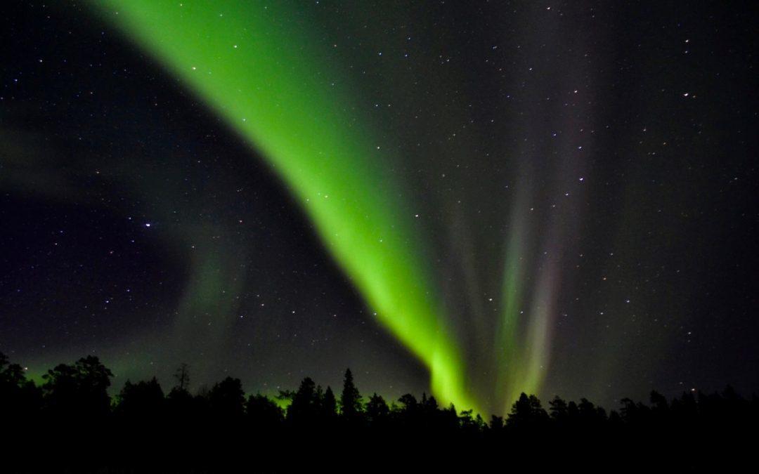 The Amazing Aurora
