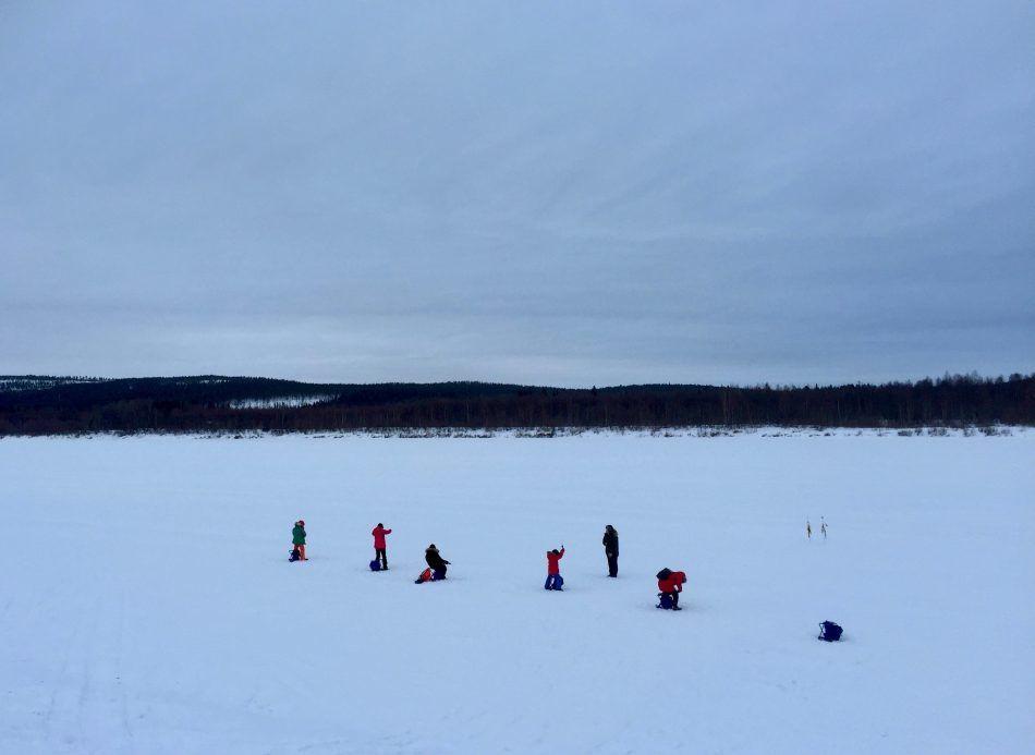 Wild About Lapland, Rovaniemi