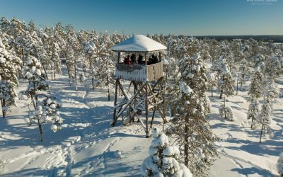 If you want to experience nature, come to Rovaniemi!
