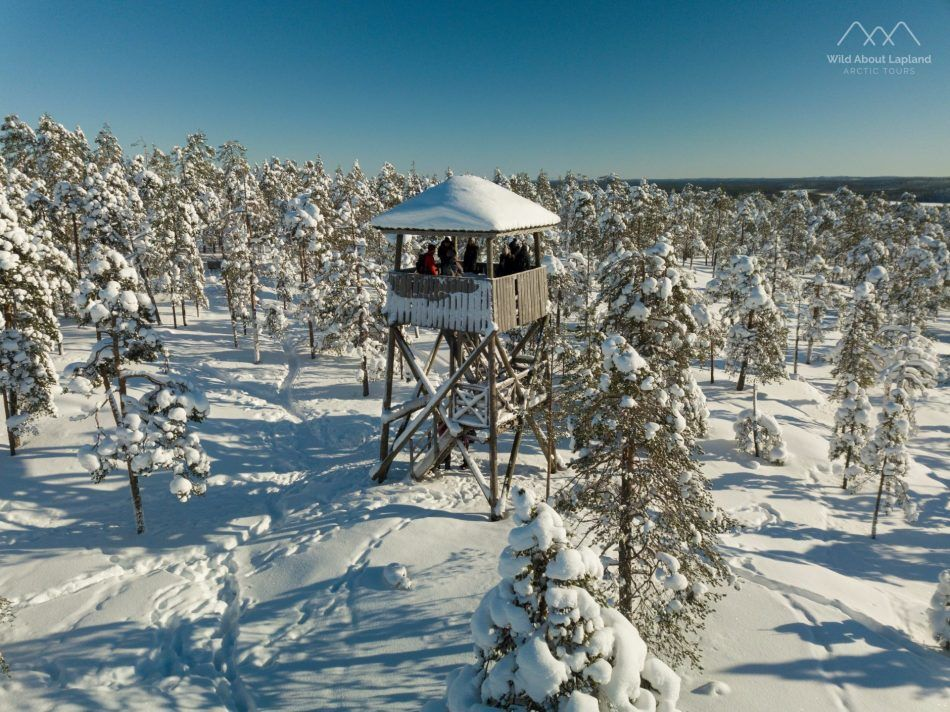 Wild About Lapland, Rovaniemi, Finland