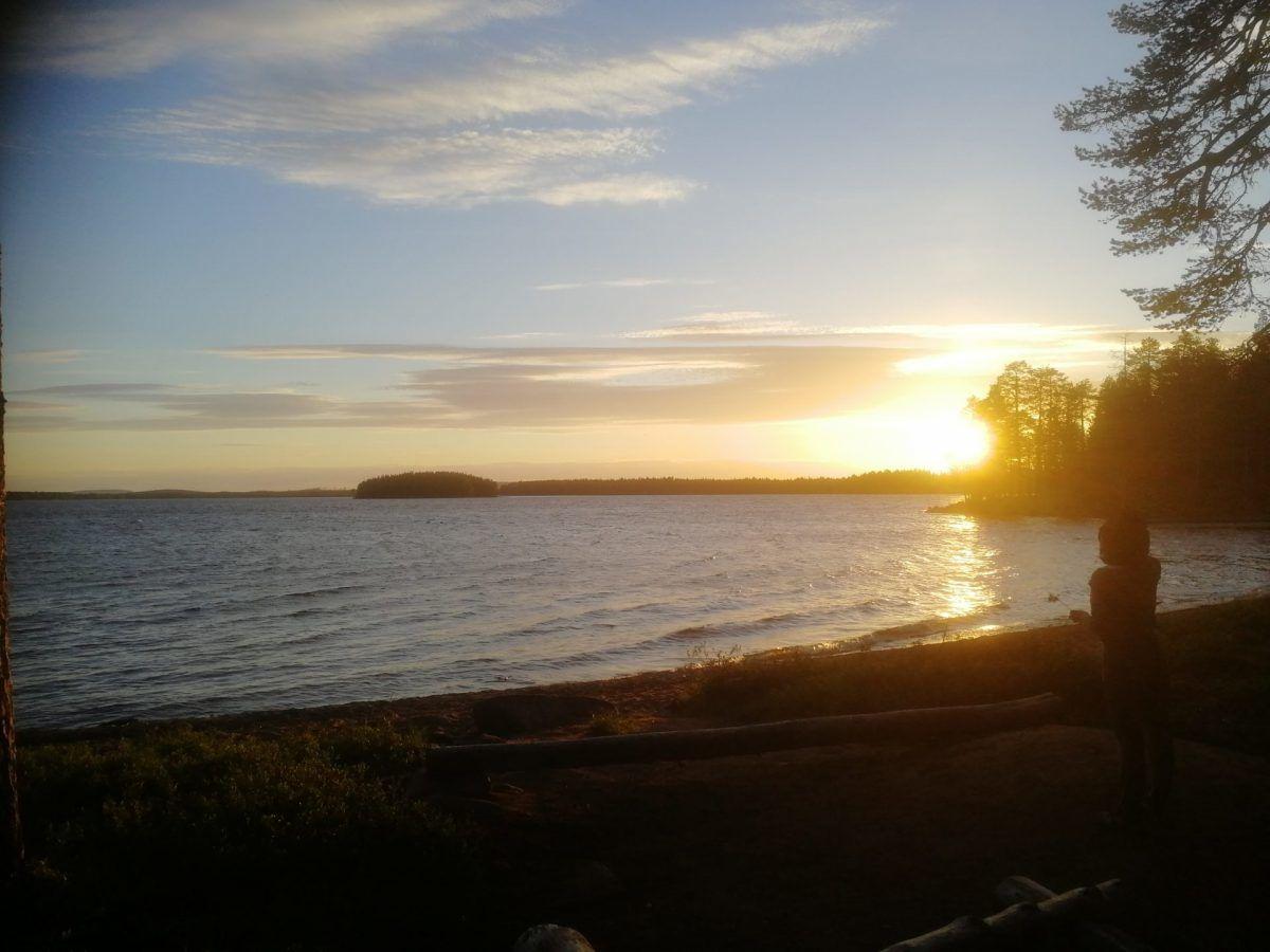 Midnight sun - Wild About Lapland, Rovaniemi