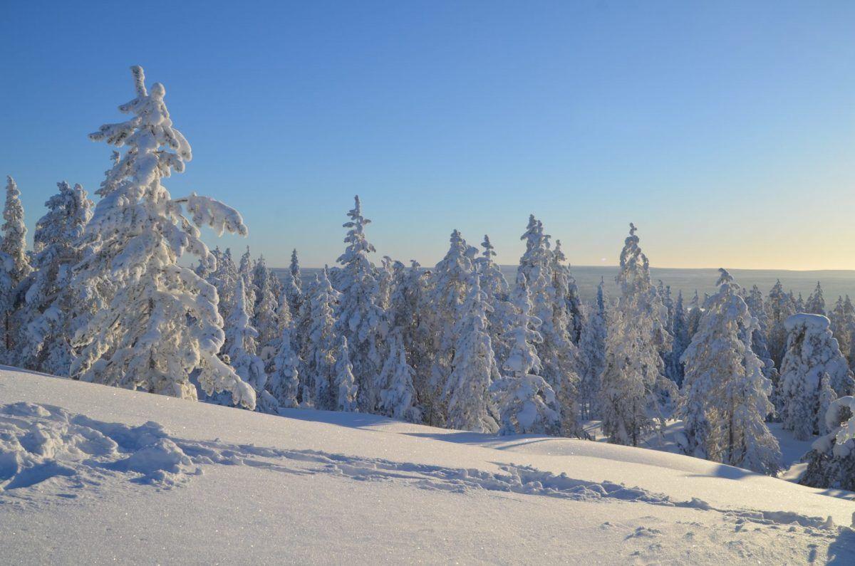 Rovaniemi Travel Covid-19 Finland