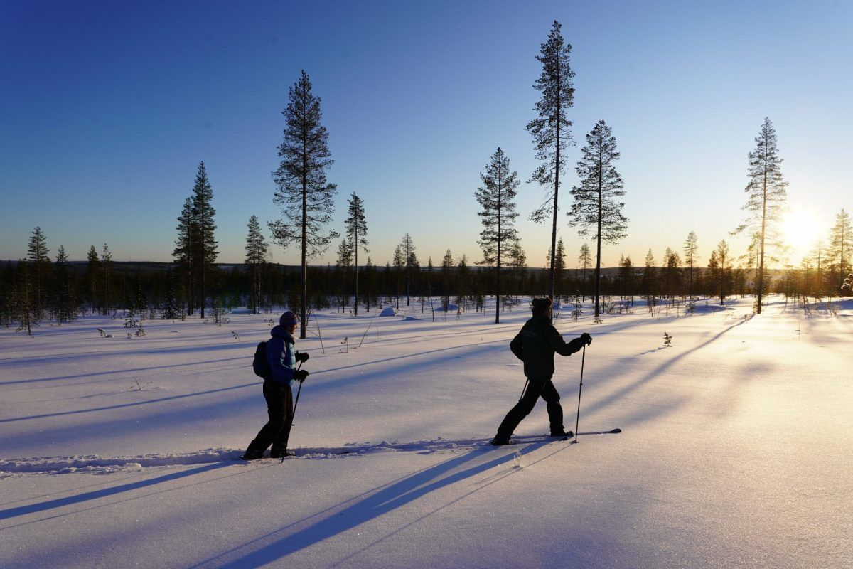 Ski Trekking Safari in Lapland