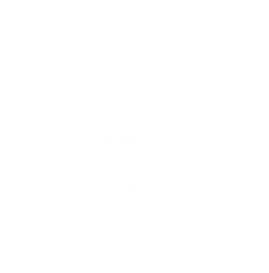 Best Company Tour Rovaniemi