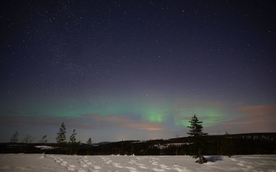 THE NORTHERN LIGHTS TOURS: 2 MARCH 2020