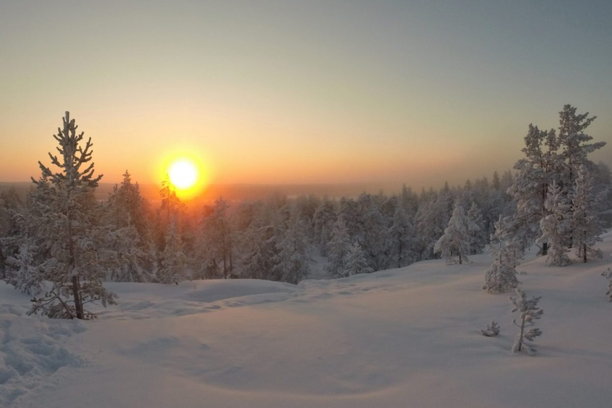 Lapland White package
