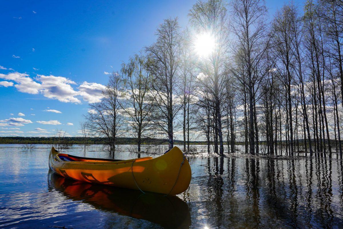 Rovaniemi Canoe Kanoottivuokraus Rovaniemellä