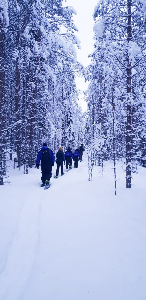 Snowshoeing in the Wilderness