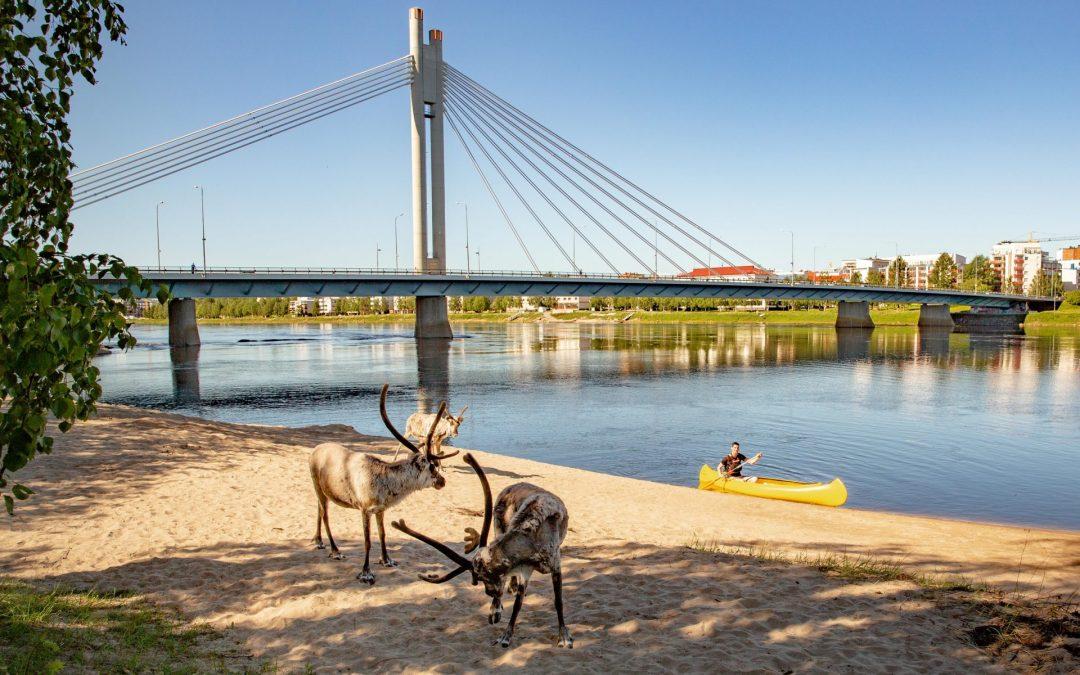 Canoeing in Rovaniemi
