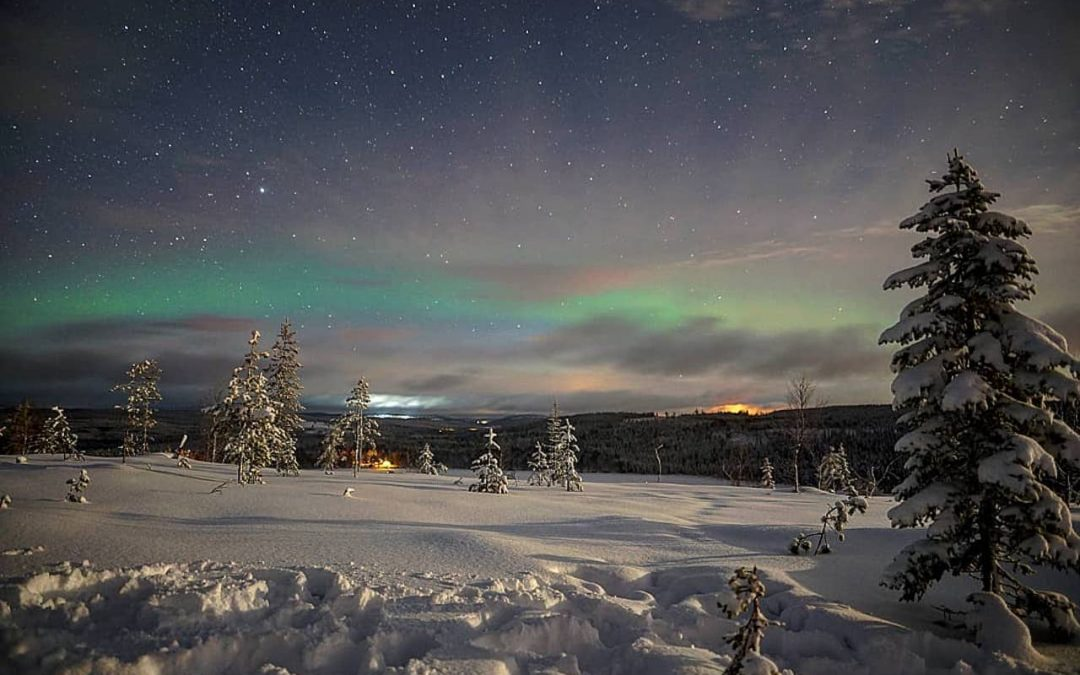 Northern Lights Tours winter 2021
